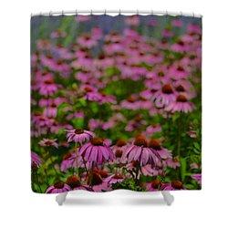 Summer's Garden Shower Curtain by Tim Good