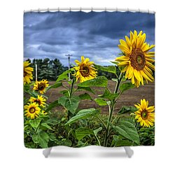 Summers Over Shower Curtain