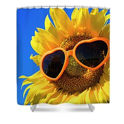 Summertime Shower Curtain by Teri Virbickis