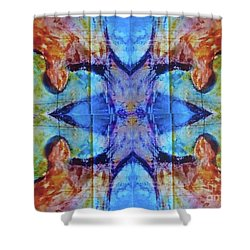 Summons Shower Curtain