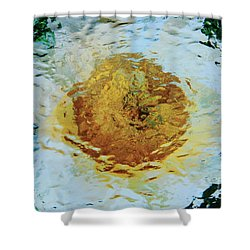 Sun And Moon Peony Impression Shower Curtain