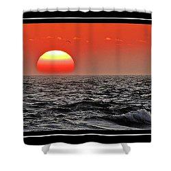 Sun And Sea Gull Ver2 Shower Curtain