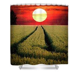 Sun Burn Shower Curtain