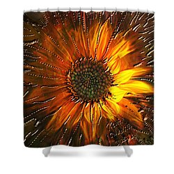 Shower Curtain featuring the painting Sun Burst by Kevin Caudill