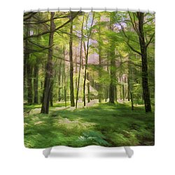 Shower Curtain featuring the photograph Sun Dappled Forest by John M Bailey