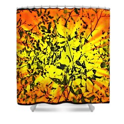 Sun Dappled Leaves Shower Curtain