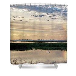 Sun Dog And Herons Shower Curtain