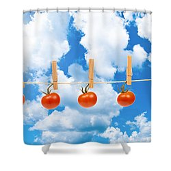 Sun Dried Tomatoes Shower Curtain by Amanda Elwell