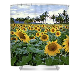 Sun Fields Shower Curtain
