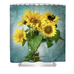 Sun Inside Shower Curtain