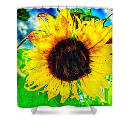 Sun Shower Curtain by Jame Hayes