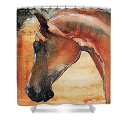 Sun Kissed Abrabian Shower Curtain
