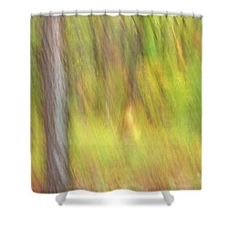 Sun Kissed Tree Shower Curtain