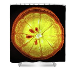 Sun Lemon Shower Curtain
