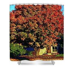 Sun-shining Autumn Shower Curtain