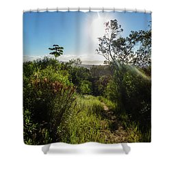 Sun Shining Over The Atlantic Forest Shower Curtain