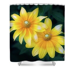 Sun Sisters Shower Curtain