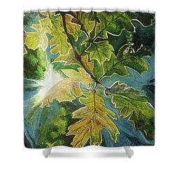 Sun Through Oak Leaves Shower Curtain