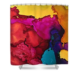 Sun Through The Boulders Shower Curtain