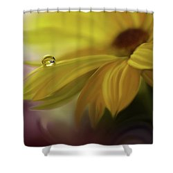 Sunbeam... Shower Curtain by Juliana Nan