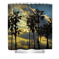 Shower Curtain featuring the photograph Sunbeams And Palm Trees By Cabrillo Beach by Randall Nyhof
