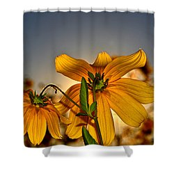 Sunblock 001 Shower Curtain