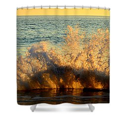Sunburst Shower Curtain by Dianne Cowen