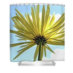 Shower Curtain featuring the photograph Sunburst by Judy Vincent