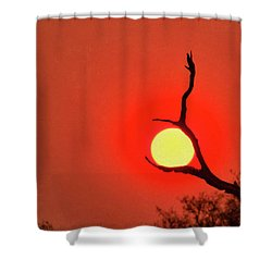 Suncatcher Shower Curtain