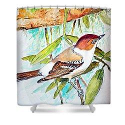 Sunda Flycatcher- Warbler Shower Curtain