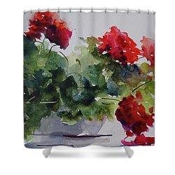 Sunday Morning Geraniums Shower Curtain by Sandra Strohschein