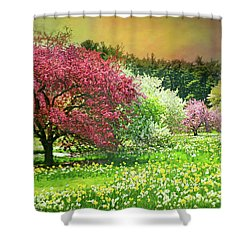 Shower Curtain featuring the photograph Sunday My Day by Diana Angstadt