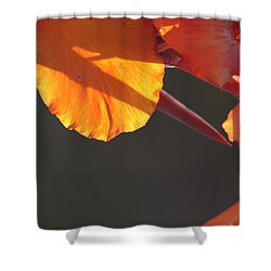 Shower Curtain featuring the photograph Sundial by Brian Boyle
