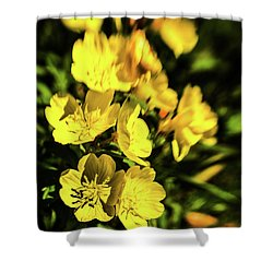 Shower Curtain featuring the photograph Sundrops by Onyonet  Photo Studios