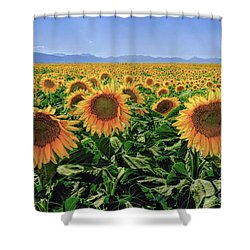 Sundrops Shower Curtain