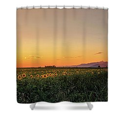 Sunfield Road Shower Curtain
