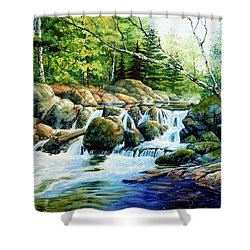 Shower Curtain featuring the painting Sunfish Creek by Hanne Lore Koehler