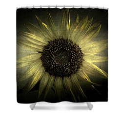 Sunflower 2 Shower Curtain by Cynthia Lassiter