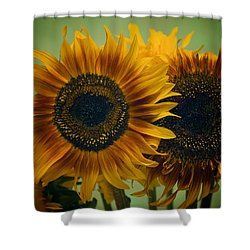 Sunflower 2 Shower Curtain by Simone Ochrym