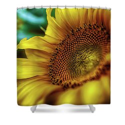Sunflower 2006 Shower Curtain