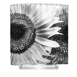 Sunflower 5 Shower Curtain by Simone Ochrym