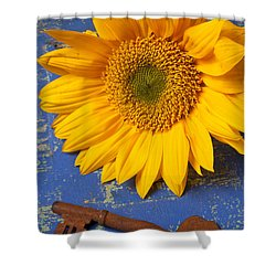 Sunflower And Skeleton Key Shower Curtain by Garry Gay