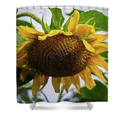 Sunflower Art II Shower Curtain