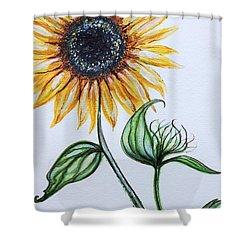 Sunflower Botanical Shower Curtain by Elizabeth Robinette Tyndall