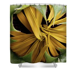 Sunflower Bud Shower Curtain