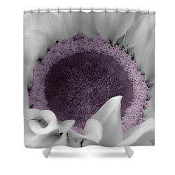 Sunflower Bw And Color Shower Curtain