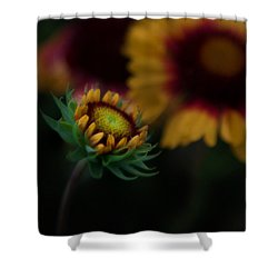 Sunflower Shower Curtain by Cherie Duran