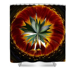Sunflower Circle Shower Curtain