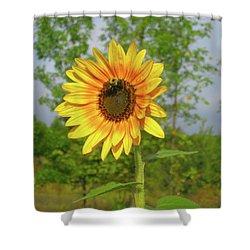 Ah, Sunflower Shower Curtain by Deborah Dendler
