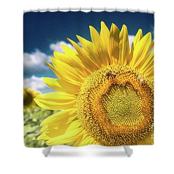 Sunflower Dreams Shower Curtain